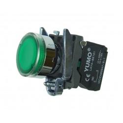 Przycisk sterowniczy podświetlany  24V DC AC zielony